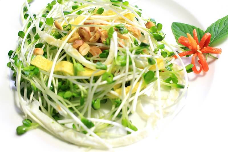 salad-giam-can-8