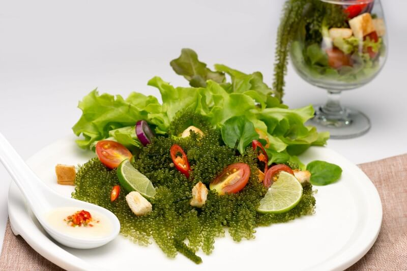 salad-giam-can-9